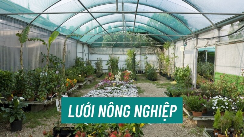 Banner Luoi Nong Nghiep